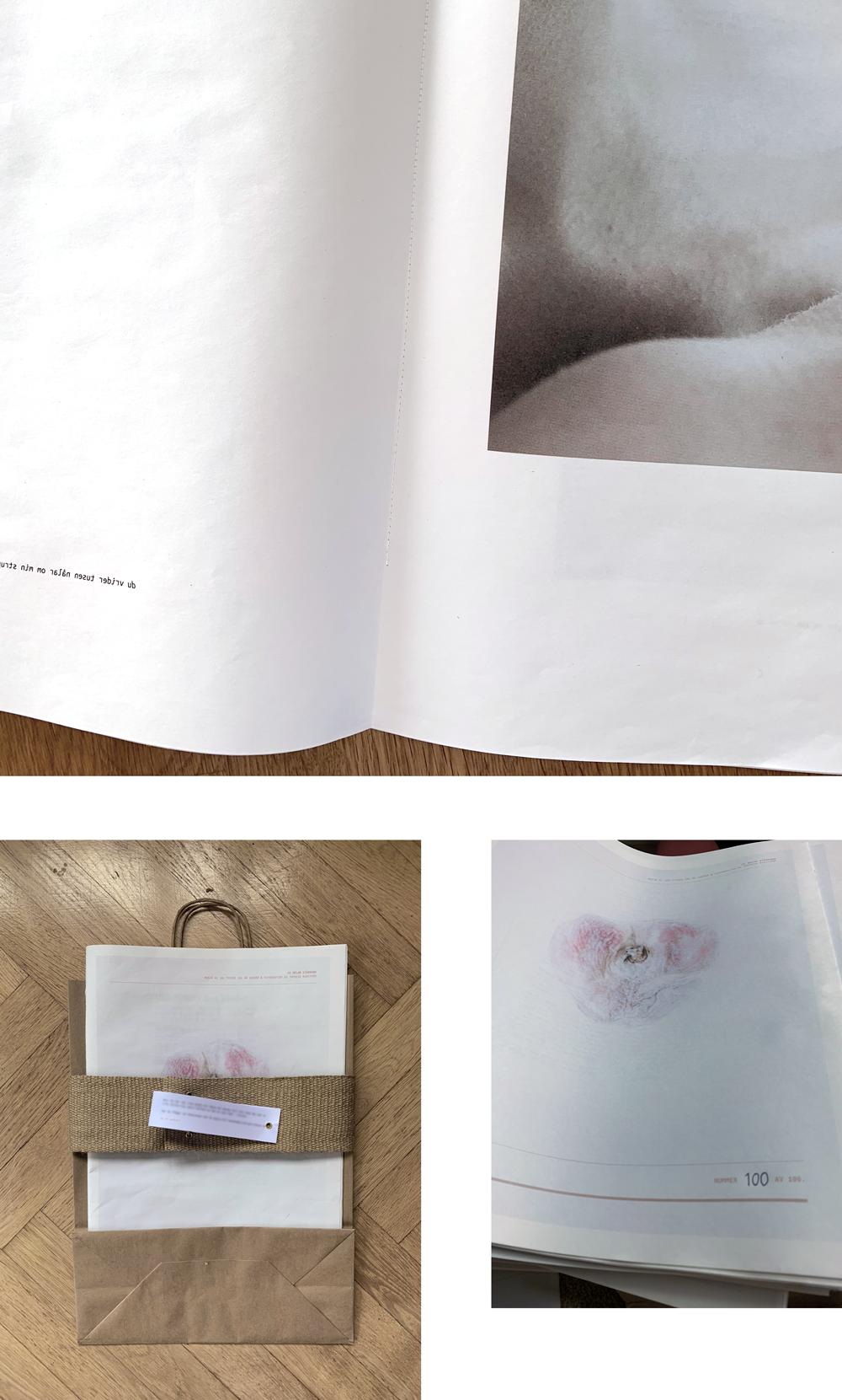 Vi delar stämband - fotobok